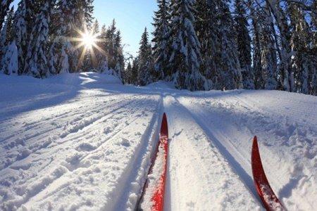 Для любителей лыжных прогулок