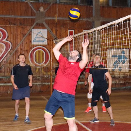 Два волейбольных дня